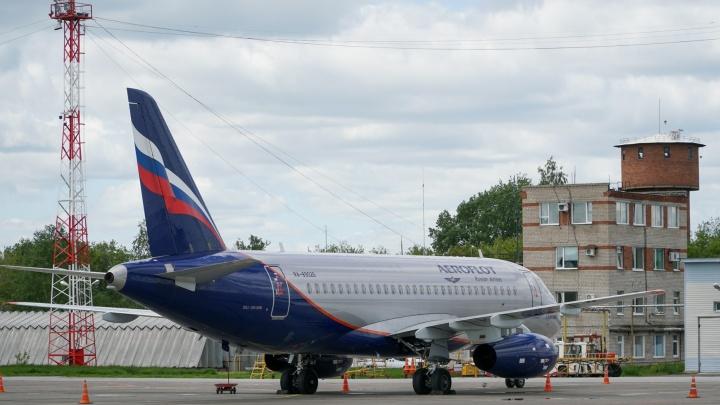 В пермском аэропорту задержали вылет рейса в Москву из-за попавшей в двигатель птицы