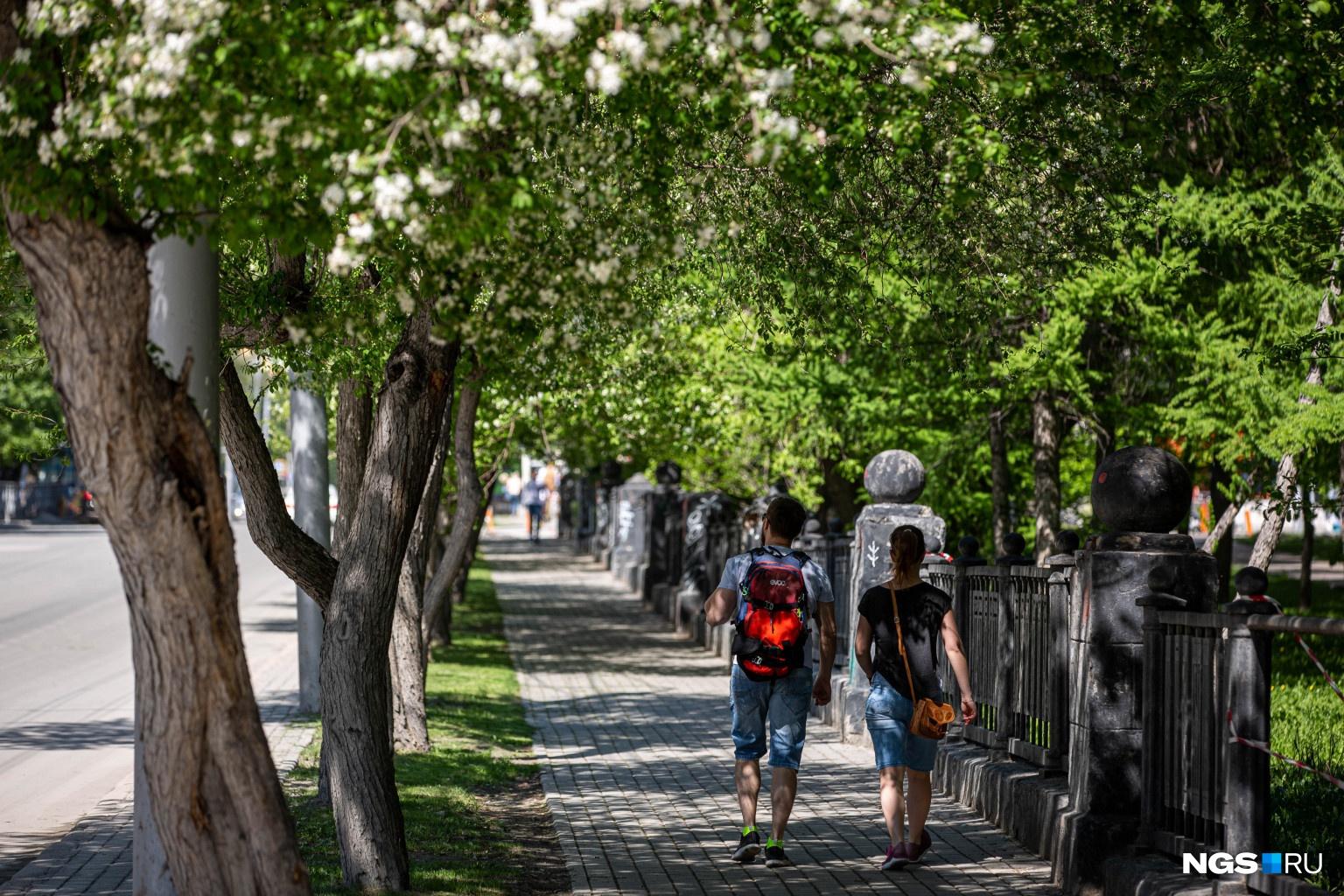 Сибиряки спокойно гуляют возле закрытого парка, полиция их не замечает