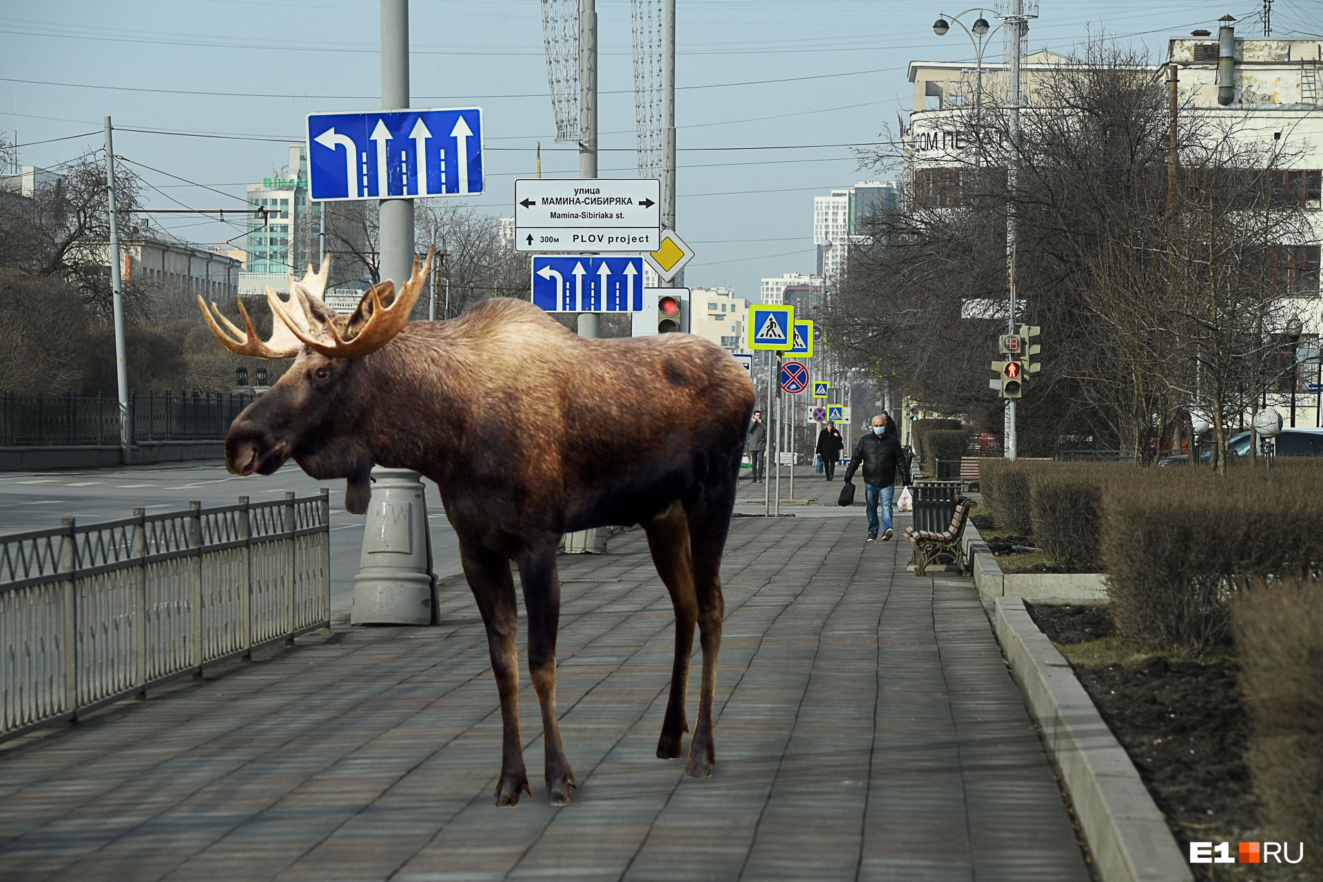 Лосьна проспекте Ленина