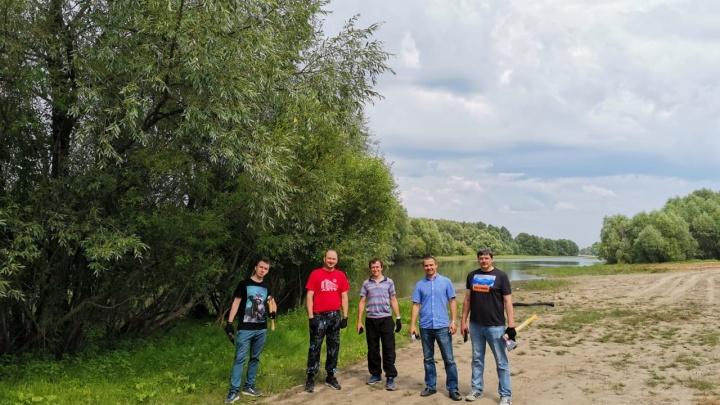 НГТУ начал готовить участок в Заельцовском бору под спортивную базу