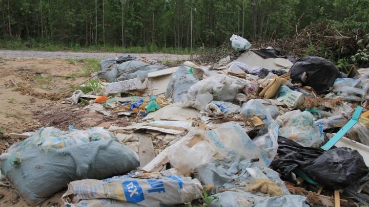 Директора «ЭкоИнтегратора» оштрафовали на 2 тысячи рублей за невывоз мусора в Верхнетоемском районе