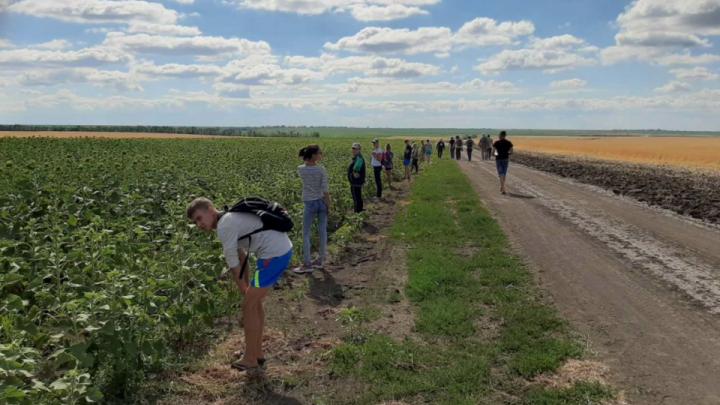 В Волгоградской области нашли труп 17-летней девушки из Йошкар-Олы
