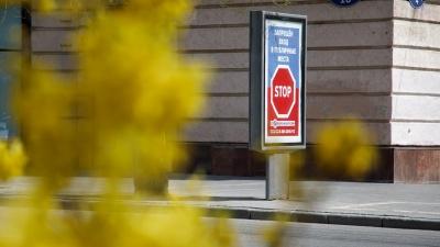 Природе не скажешь «оставайся дома»: смотрим фоторепортаж с улиц взорвавшегося буйным цветом Волгограда