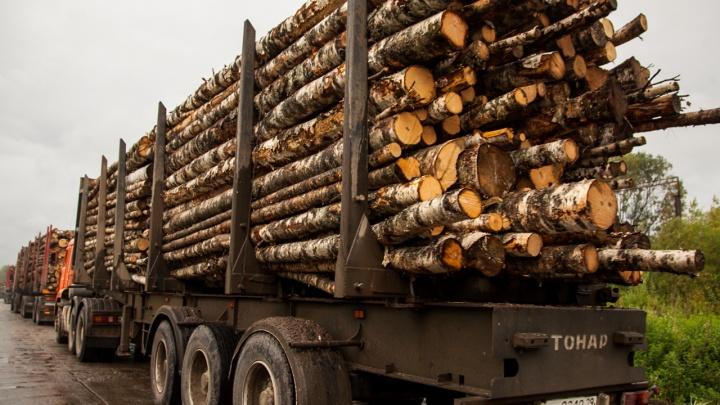 На дорогах Мезенского района временно ограничили движение автотранспорта массой свыше 10 тонн