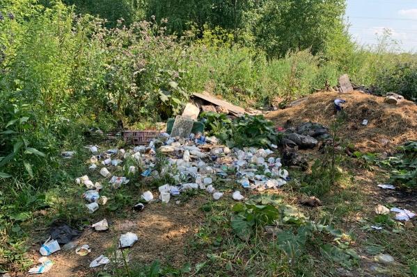 Эти же отходы тюменцы видели в прошлом году. Только за время их стало больше