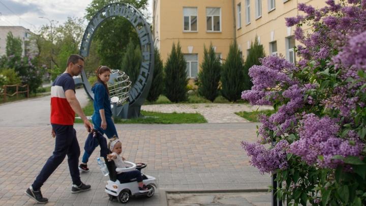 В Волгоградскую область пришли сильный ветер и дожди