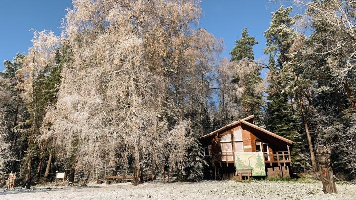 На «Столбах» выпал первый снег. Любуемся красивыми фото