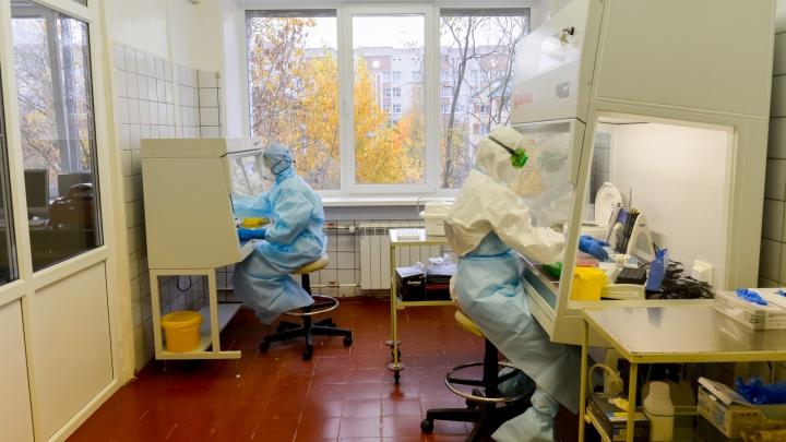 Оперштаб России подтвердил 198 случаев COVID-19 за последние сутки в Архангельской области