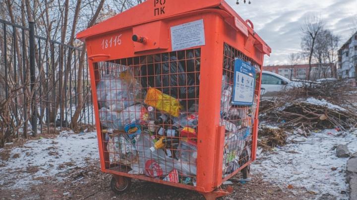 В оранжевые баки собрали 25 тонн вторсырья: проверяем, как в Перми работает раздельный сбор мусора
