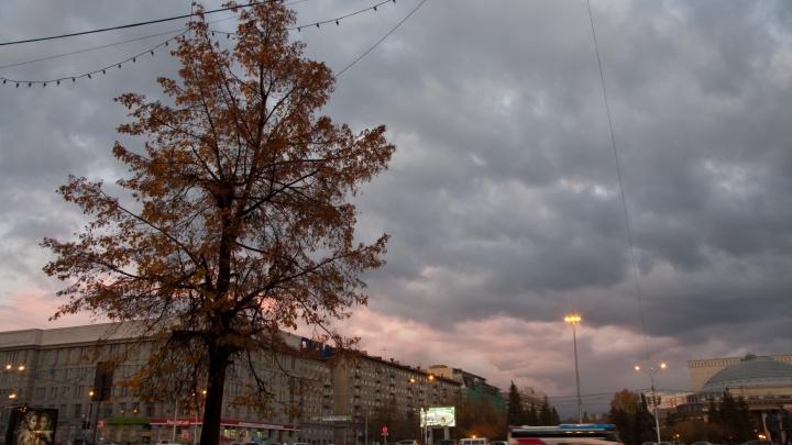 Неделя в Новосибирске начнётся с резкого похолодания