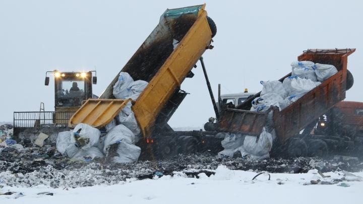 «Интереса не было»: ни одна из транспортных компаний не взялась вывозить мусор с Новой Земли