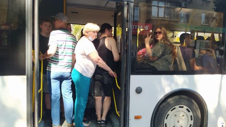 Это просто какой-то геноцид: волгоградцы снова жалуются на битком забитые автобусы