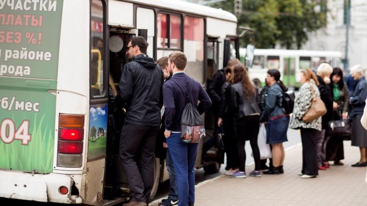 В Ярославле автобус и маршрутка изменят маршрут движения