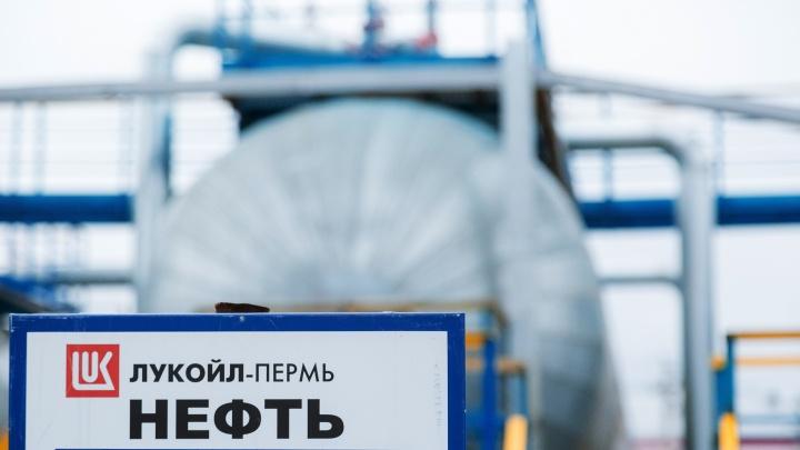 «ЛУКОЙЛ-ПЕРМЬ» выиграл аукцион на разработку нового участка в Кунгурском районе