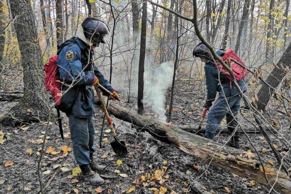 Огнеборцы тушили пламя с помощью специальных ранцев
