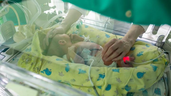 Как узнать вероятность генетического заболевания у будущего ребенка и сколько это стоит? Отвечает генетик
