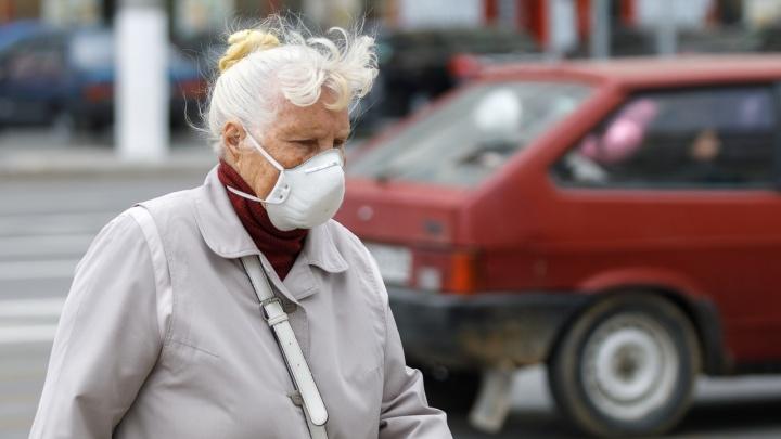 «И воздух воняет, и вода»: север Волгограда накрыло запахом тухлятины
