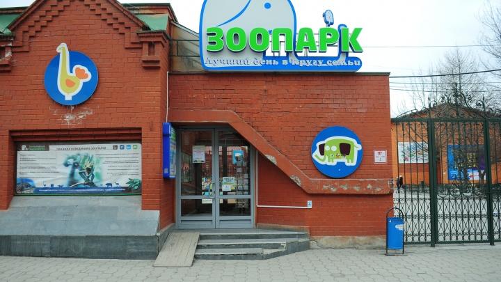В двухэтажном здании на территории Екатеринбургского зоопарка установят лифт
