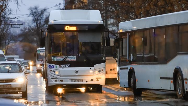 Автобусы в Ростове будут ходить в новогоднюю ночь