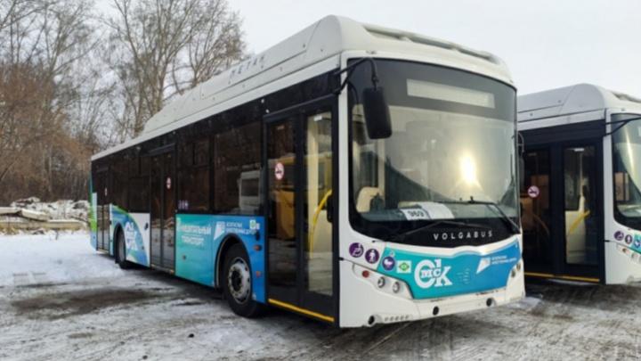 Все 20 автобусов Volgabus добрались до Омска