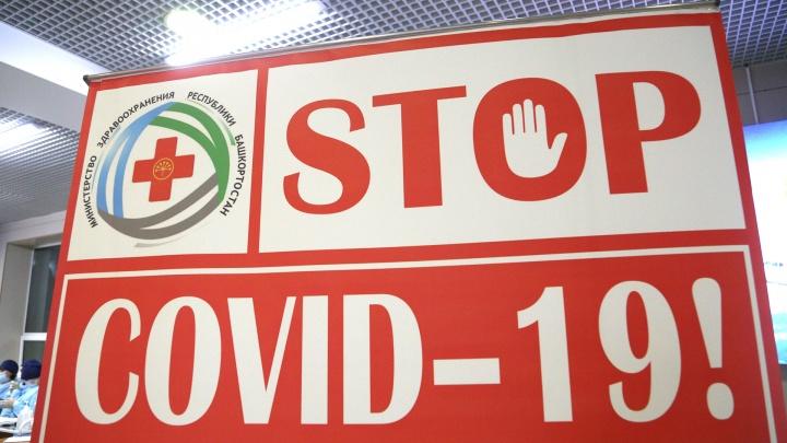 В Башкирии прибывших с курортов Краснодарского края будут тестировать на коронавирус