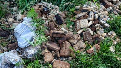 В Нижнем Новгороде нашли свалку ржаного хлеба. Смотрим видео