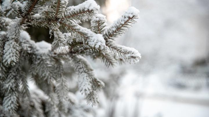 «Циклон пришел из Питера»: синоптики рассказали, как долго продержится тепло в Новосибирске