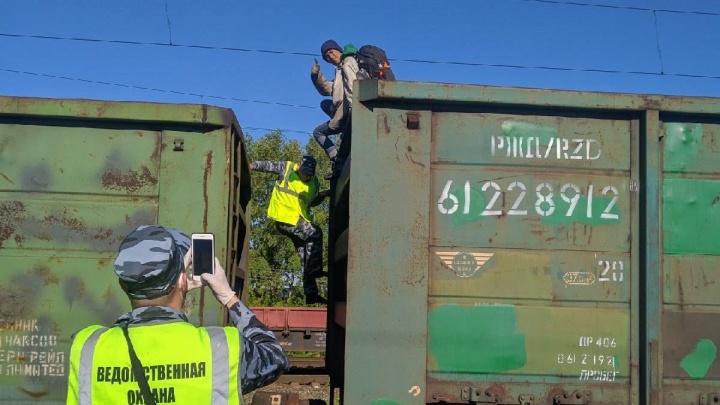 В Прикамье задержали блогера из Ижевска: он ехал зайцем в вагоне с углем