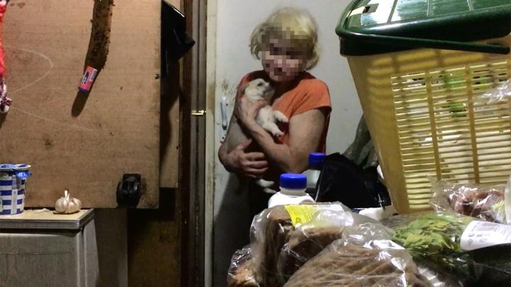 «Это даже не ад, это хуже»: в Ярославле женщина устроила собачью тюрьму в квартире