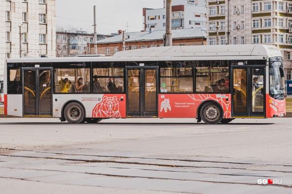 До Перми I будут ходить дополнительные автобусы