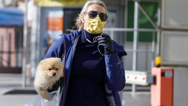 Ввели масочный режим, разрешили гулять, ходить к зубному и в магазины: хроники коронавируса в Волгограде