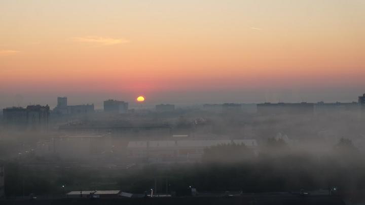 «Флера депрессии, говорите, нет?»: курганцы сообщают о запахе канализации в городе