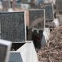 Из-за нехватки мест на кладбище в Таганроге начнут хоронить «в режиме ЧС»