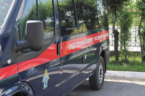 Ситуацией с массовым отравлением шаурмой в Шадринске занялись Следственный комитет и Роспотребнадзор