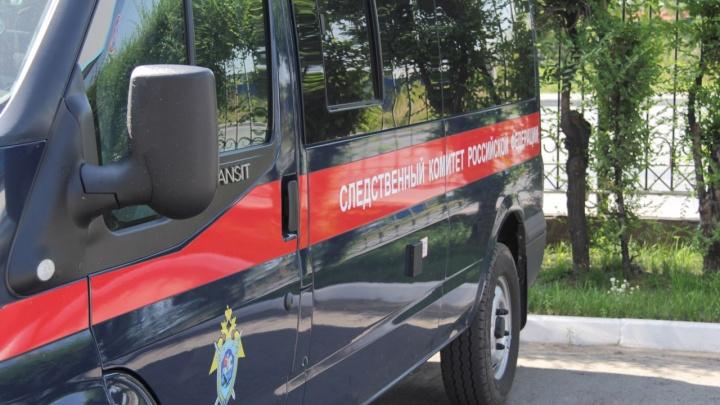 В Шадринске выросло число отравившихся шаурмой. Следователи проводят проверку