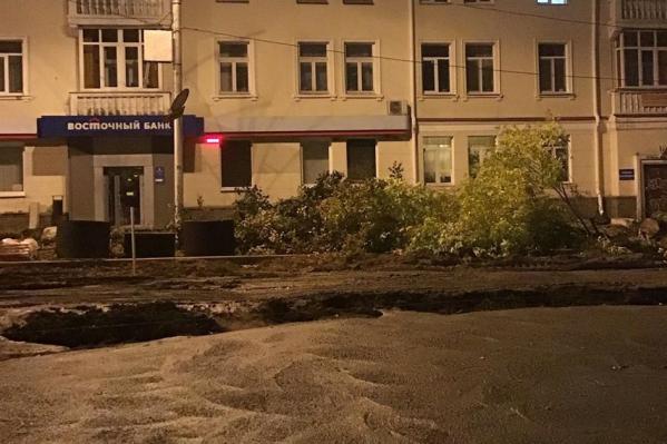 Вырубка деревьев, по словам очевидца, началась вечером 21 сентября