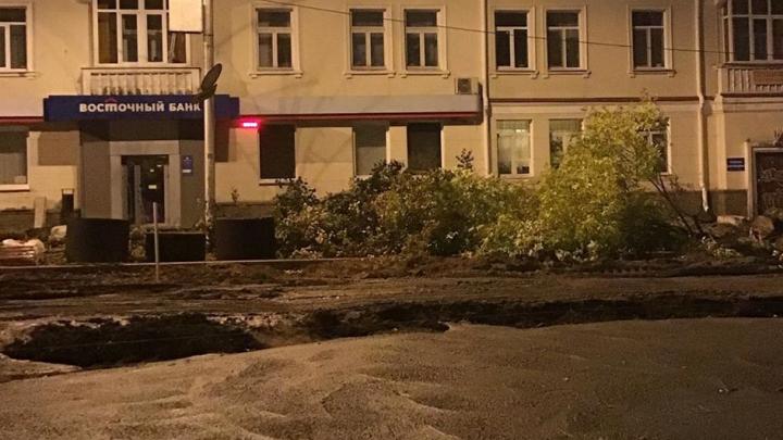 «Наблюдаем такую нелицеприятную картину»: на Советской площади в Уфе начали рубить липы — есть видео