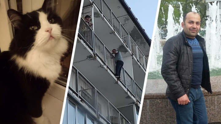 """«Будто говорила: """"Вытащи меня""""»: новосибирец полез по балконам на 9-м этаже спасать чужую кошку"""