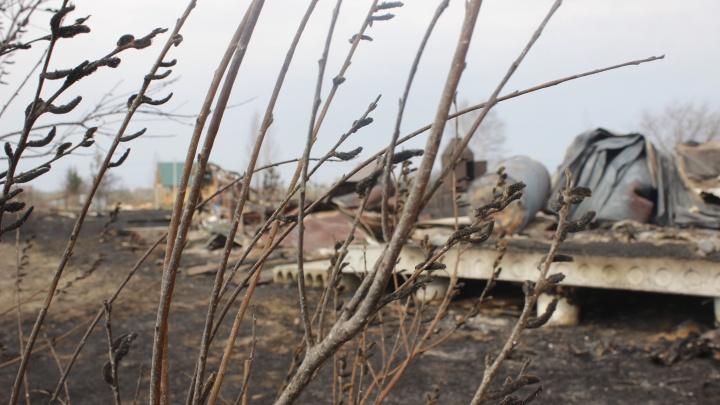 «Всем аулом воду таскали»: под Новосибирском сгорели 80 построек — репортаж с места ЧП