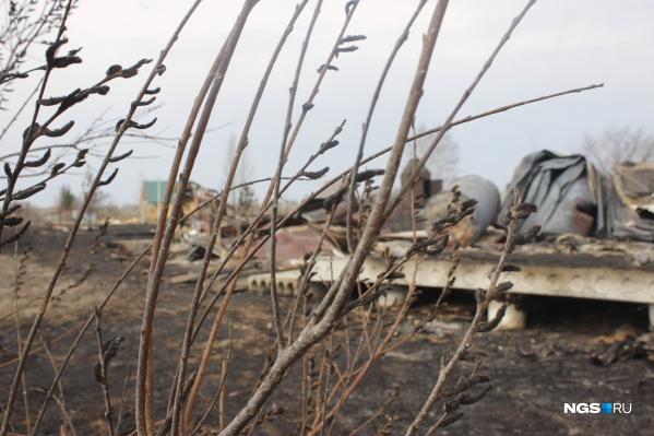 Сначала загорелись поля, потом огонь перекинулся на дачи