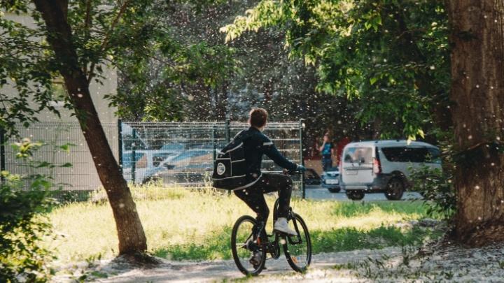 В Тюмени на грядущей неделе будет жарко и ни капли дождя. Прогноз погоды