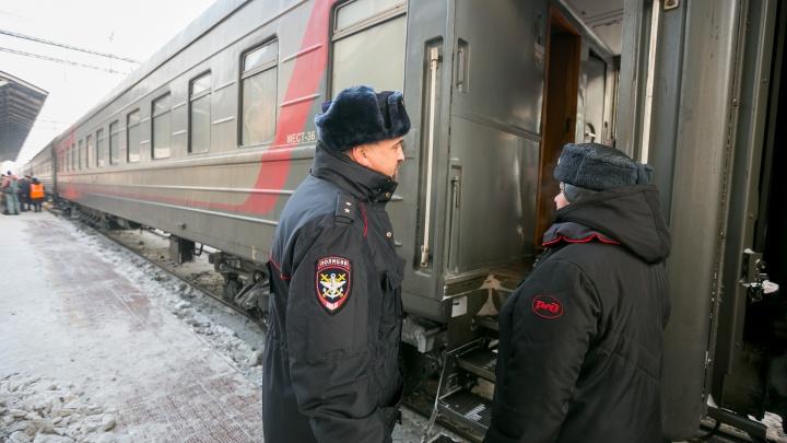 Многодетная мать устроила дебош в поезде на пути в Красноярск