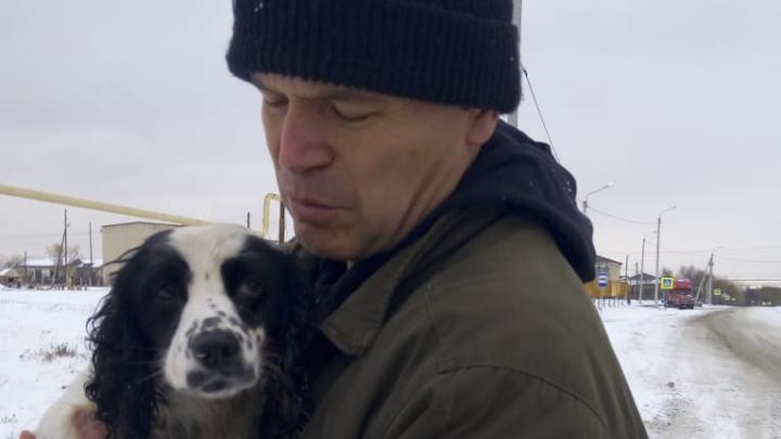«Что, депутату нужнее?»: южноуральцы потребовали от Андрея Барышева вернуть им потерянную собаку