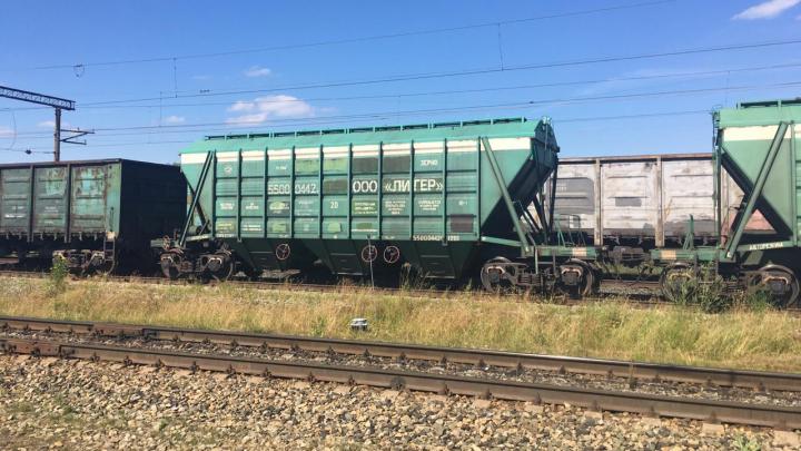 В Прикамье 12-летний мальчик залез на крышу поезда и погиб от удара током