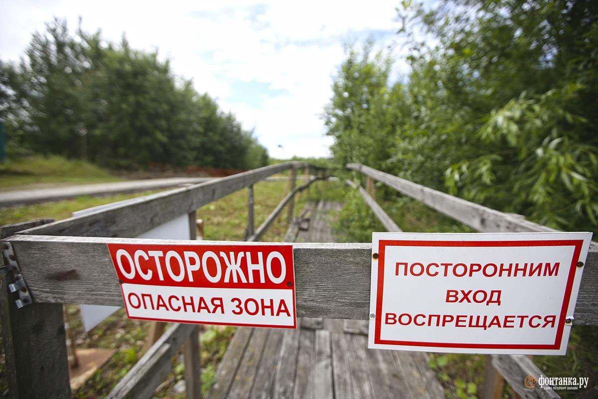 Охтинский мыс<br><br>автор фото&nbsp;Павел Каравашкин / «Фонтанка.ру»<br>
