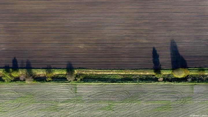 Геометрия посевной: завораживающие фото ярославских полей, сделанные с высоты птичьего полёта