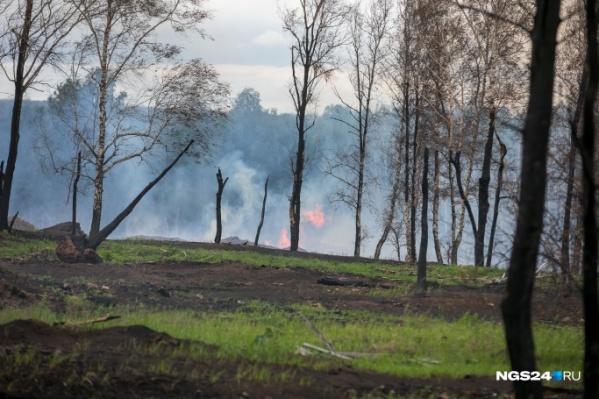 Причиной дымки назвали пожары в соседних регионах