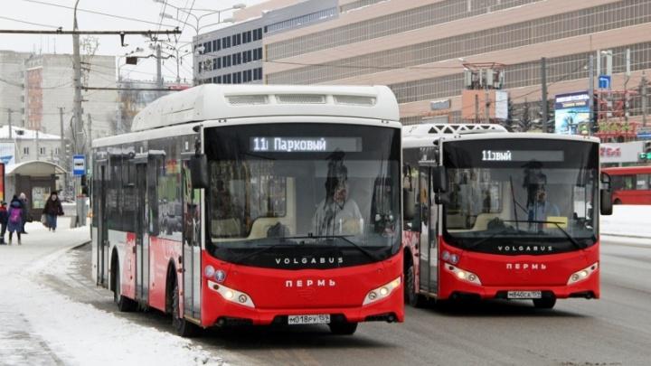 В Перми увеличили количество рейсов общественного транспорта