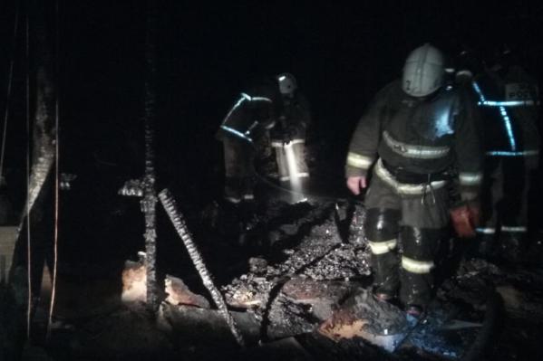 Площадь возгорания составила 50 кв. метров