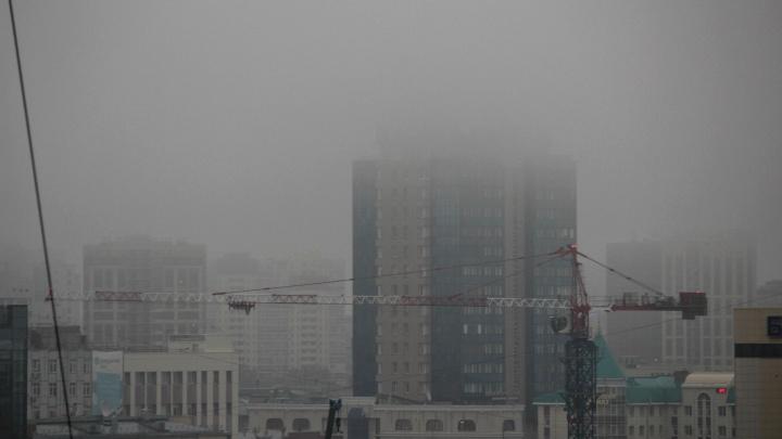 Новосибирск окутало плотной дымкой. И это не туман — 5 мрачных кадров